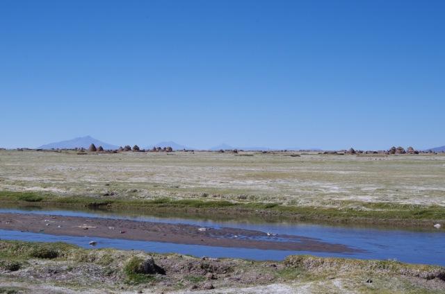 IMGP6136